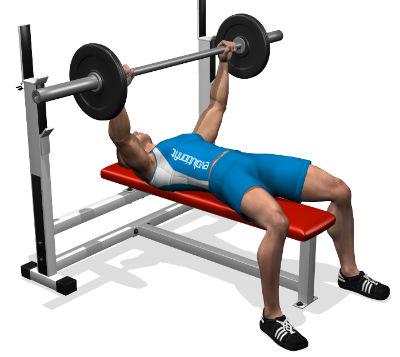 Programma allenamento total body